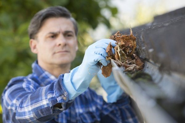 man collecting leaves from dirty gutters