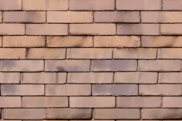 stained slate tile roof that requires cleaning